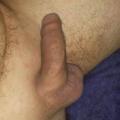 Bibog69